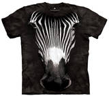 Youth: Big Face Grevys Zebra Smithsonian Collection Tshirts