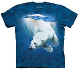 Youth: Polar Bear Dive T-Shirt