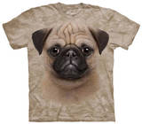 Youth: Pug Puppy T-Shirts