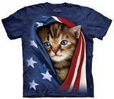 Youth: Patriotic Kitten T-Shirts