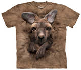 Youth: Baby Kangaroo T-Shirt