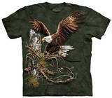 Youth: Find 12 Eagles T-shirts