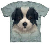 Youth: Border Collie Puppy T-Shirts