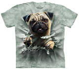 Youth: Pug Breakthru T-Shirt