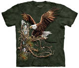 Find 12 Eagles T-Shirts