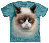 Youth: Grumpy Cat T-shirts
