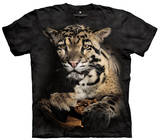 Youth: Clouded Leopard Smithsonian Collection T-Shirt