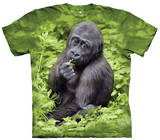 Youth: Kojo Gorilla Smithsonian Collection Bluser