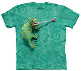 Youth: Climbing Chamelion T-Shirt