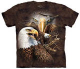 Find 14 Eagles T-Shirt
