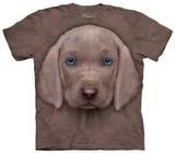 Youth: Weimaraner Puppy T-shirts