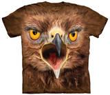 Crazy Hawk Vêtement