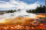 Castle Geyser Yellowstone Park Stretched Canvas Print