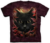 Autumn Cat T-shirts