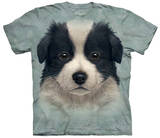 Border Collie Puppy T-shirts