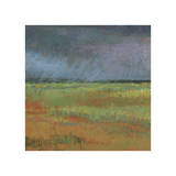 Rain Passing Through Giclee Print by Jeannie Sellmer