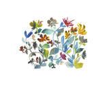 Peregrine Garden Giclee Print by Kiana Mosley