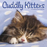 Cuddly Kittens  - 2016 Mini Calendar Calendars