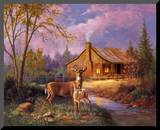 Deer Near Cabin Mounted Print by M. Caroselli