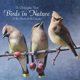 Birds in Nature by Chris Vest - 2016 Calendar Calendars
