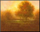Golden Forest Mounted Print by Jim Mitchell