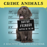 Crime Lab Pets - 2016 Calendar Calendars