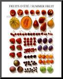 Summer Fruit Mounted Print