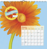 Sweet Blossoms by Cory Steffen - 2016 Calendar Calendars