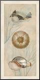 Ocean Companions II Mounted Print by Deborah Devellier