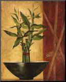 Lucky Bamboo II Mounted Print by Eugene Tava