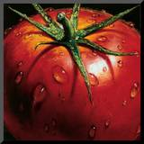 Tomato Mounted Print by  Alma'ch