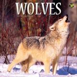 Wolves - 2016 Mini Calendar Calendars