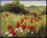 Sunlit Meadow Mounted Print by Mary Dipnall