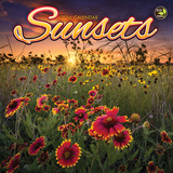 Sunsets - 2016 Mini Calendar Calendars