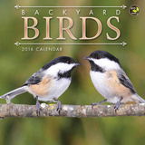 Backyard Birds - 2016 Mini Calendar Calendars
