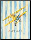 Airplane Mounted Print by Catherine Richards