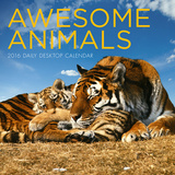 Awesome Animals - 2016 Daily Boxed Calendar Calendars