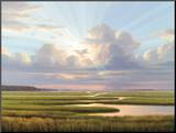 Low Country Splendor Mounted Print by Henry Von Genk