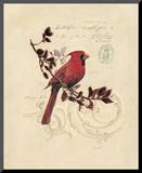 Filigree Cardinal Mounted Print by Chad Barrett
