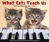 What Cats Teach Us - 2016 Boxed Calendar Calendars