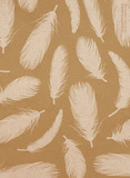 Feathers  - 2016 18 Month Planner Calendars