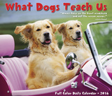What Dogs Teach Us - 2016 Boxed Calendar Calendars