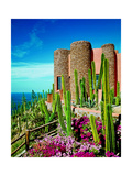 Architectural Digest Photographic Print by David Marlow