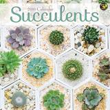 Succulents - 2016 Calendar Calendars
