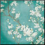 White Cherry Blossoms II Mounted Print by Danhui Nai