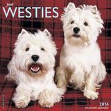 Westies - 2016 Calendar Calendars