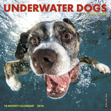 Underwater Dogs Mini - 2016 Mini Calendar Calendars