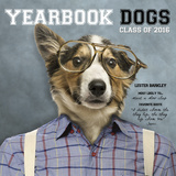 Yearbook Dogs - 2016 Calendar Calendars