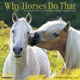 Why Horses Do That - 2016 Calendar Calendars