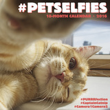 Petselfies - 2016 Calendar Calendars